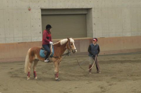 インストラクターさんのまわりをぐるぐるまわりながらレッスンを受ける。馬と息を合わせることを忘れずに!